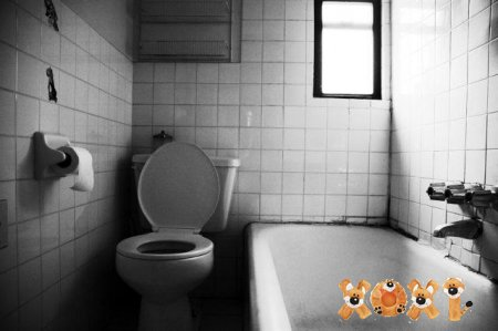 Интересные фото ванных комнат