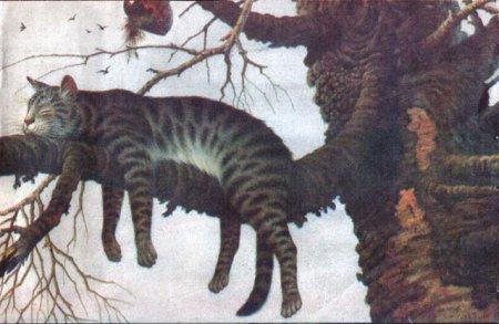 1 марта - день мартовского кота!!!