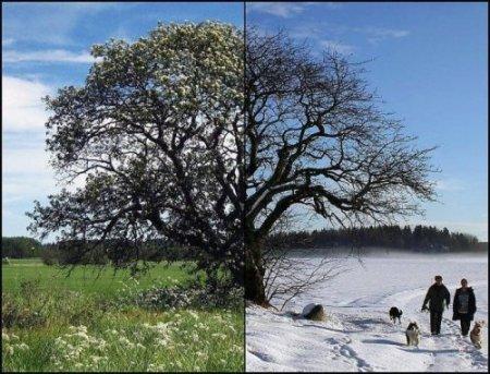 Лето-зима